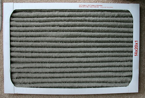 If your air filter looks like this, you just might be a first time home owner