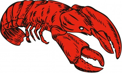 To Enjoy Maine Lobster is a pleasure unlike any other